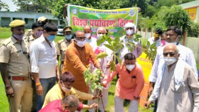 BJP workers planted trees on World Environment Day and Chief Minister's birthday